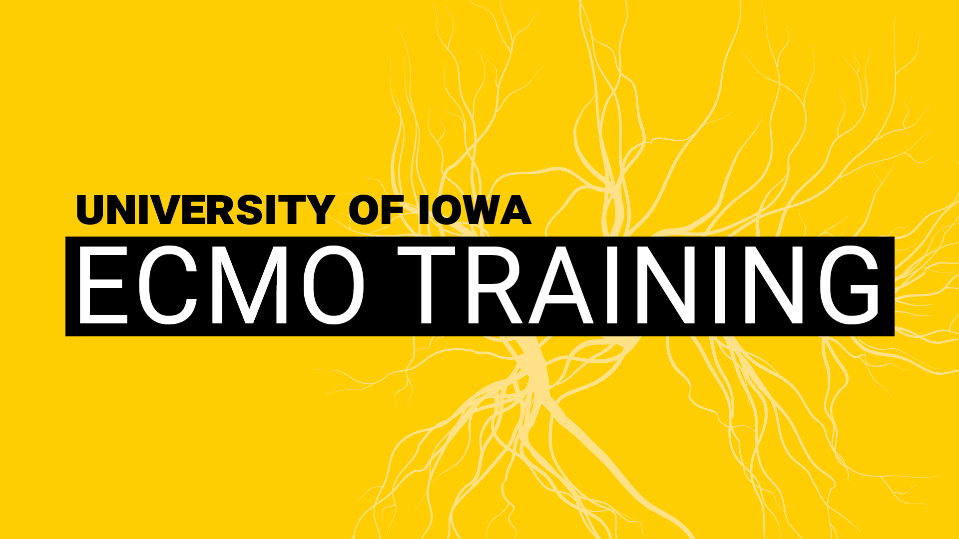 ECMO Training Course May 2021 Banner